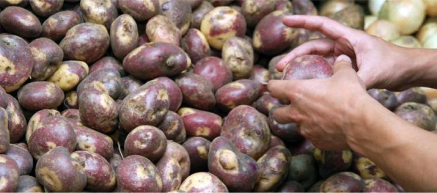 Colombian potatoes2