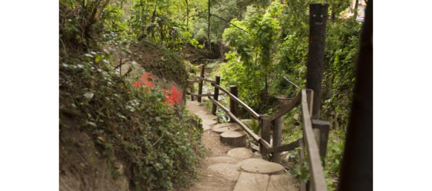 Quebrada La Vieja path