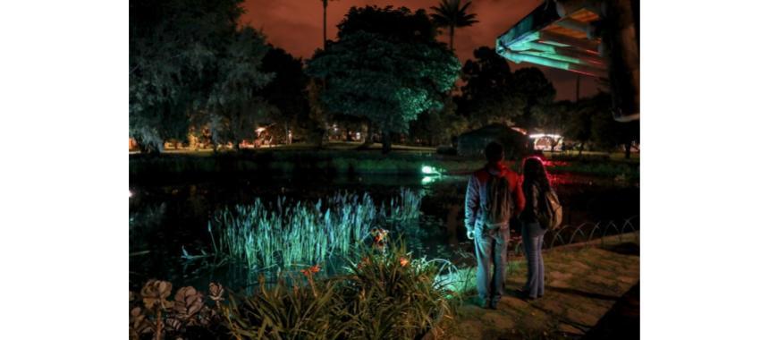 Botanical Garden at night