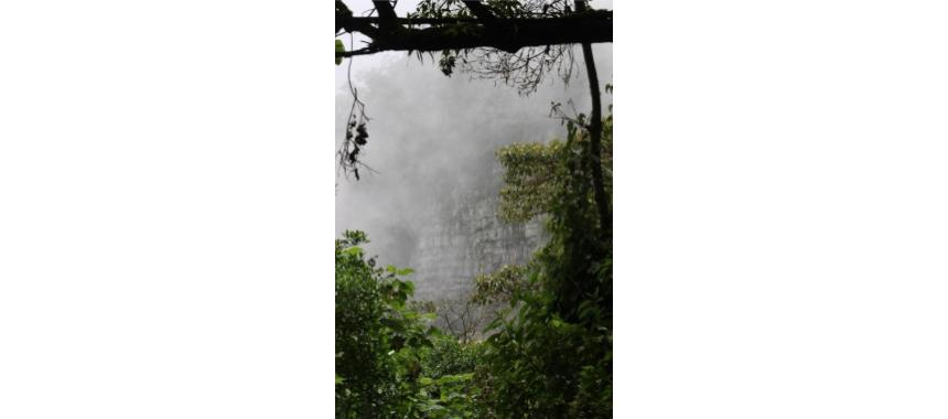 Fog at Chicaque