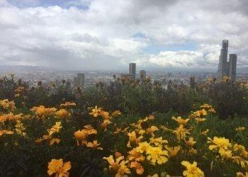 Bogotá's landscape